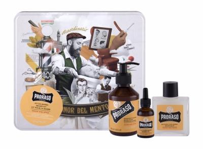 Set Wood & Spice Beard Wash - PRORASO - Sampon