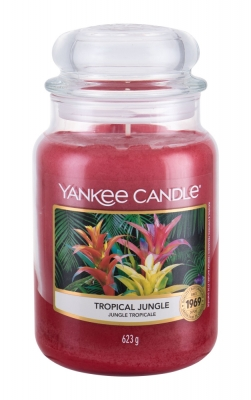 Tropical Jungle - Yankee Candle - Ambient